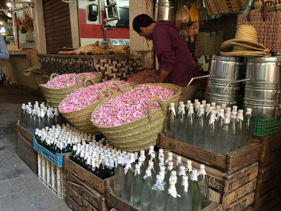 201505_Morocco_iphone-2657
