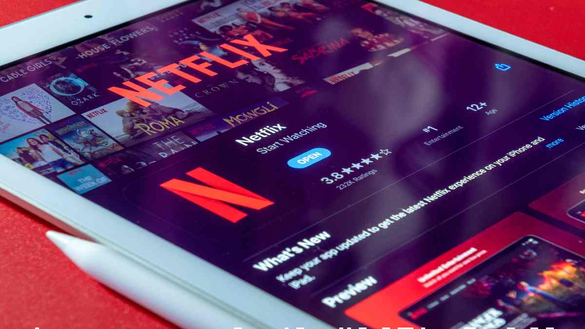 Netflix ext