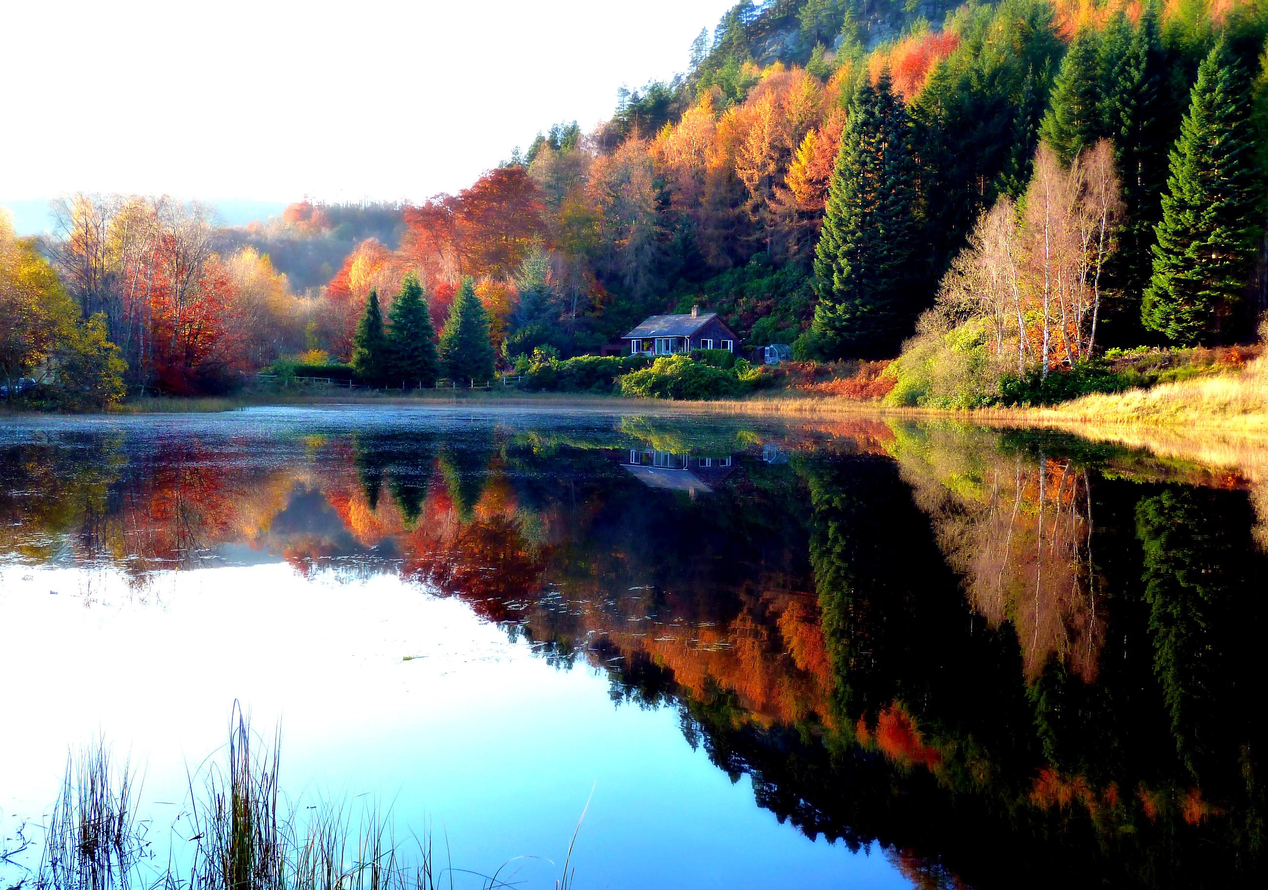 Обои осень, пейзаж, лес, отражение в озере, дом, природ на ...