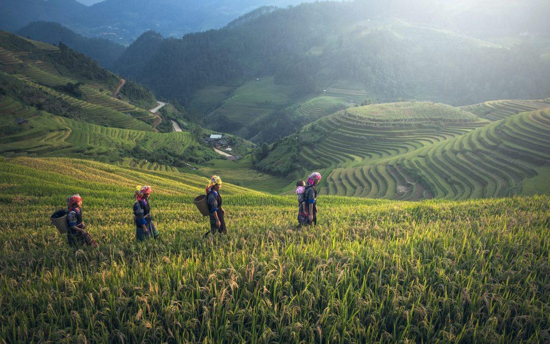 Fondacio Asia's Shared Journey of Transformation