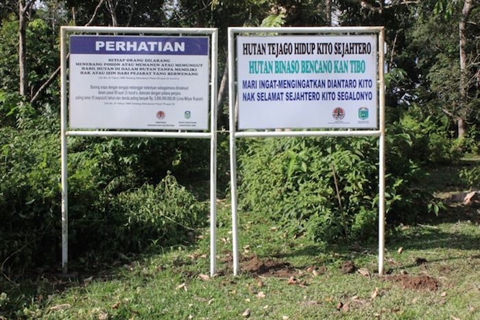 The conservation of forests and wildlife is essential to provide a better quality of life. Support For A Forest And Wildlife Conservation Project In Sumatra Fondation Michelin