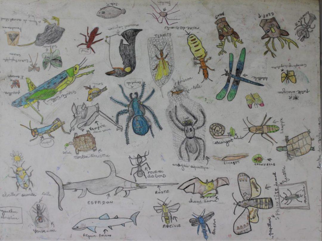Christian Gauthier, nd, crayons de couleur sur papier, 55 x 73cm