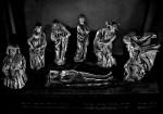 """da """"Compianto sul Cristo morto di Niccolò dell'Arca"""", 2012"""