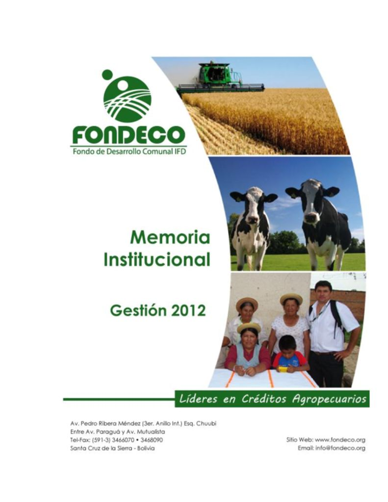 thumbnail of Memoria Institucional 2012