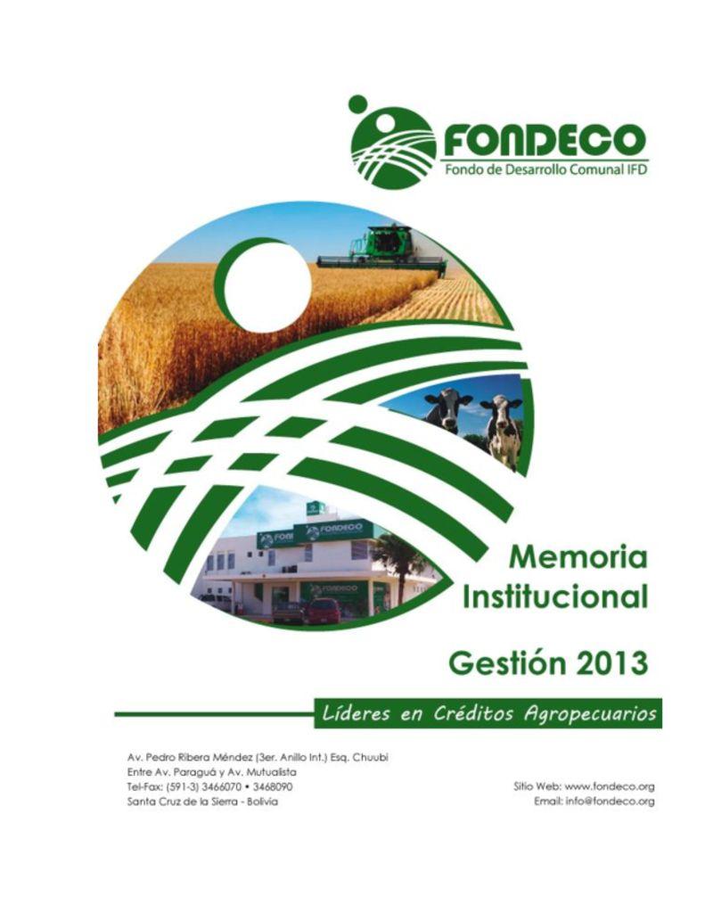 thumbnail of Memoria Institucional 2013