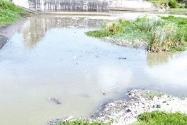 Promueven Fondo Agua Yaque del Norte para mejorar cuencas