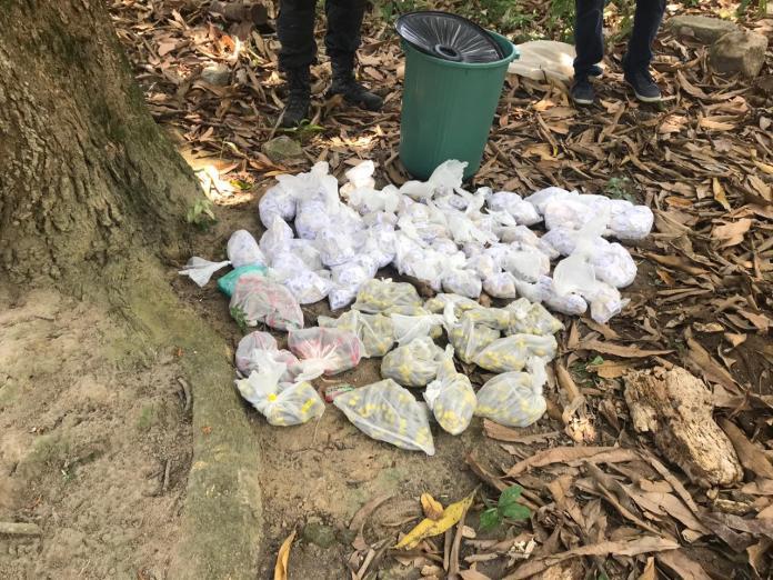 Foram encontrados 2830 pinos de cocaína e 650 tabletes de maconha. Foto: PM/Divulgação