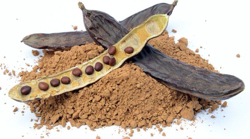 Chocolate de Alfarroba Faz Bem  - Chocolate de Alfarroba Faz Bem Para a Saúde e Para o Corpo