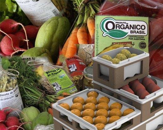 alimentos orgânicos 4 - Diferenças entre os alimentos orgânicos e os comuns