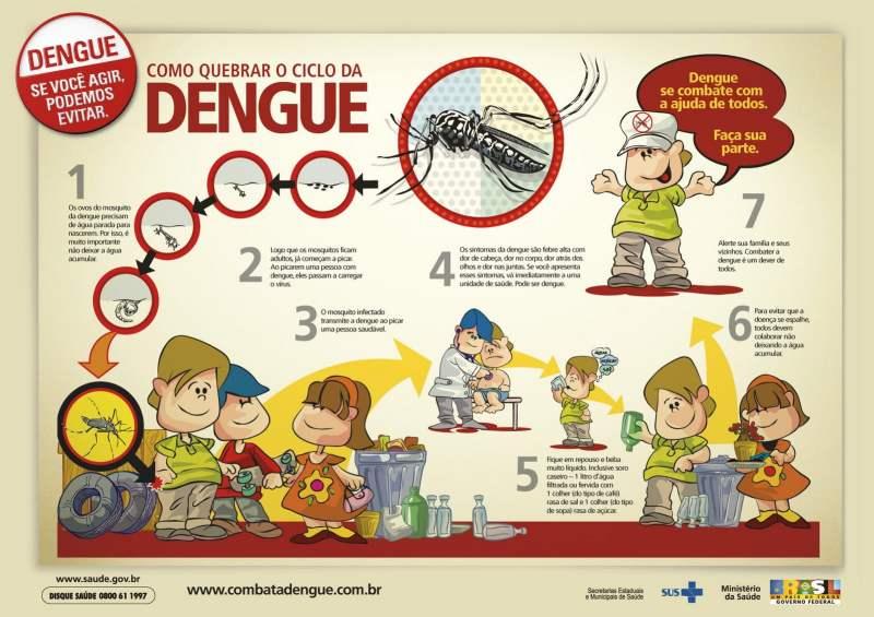 DENGUE 4 - Prevenir a dengue: saiba como deixar o mosquito longe!