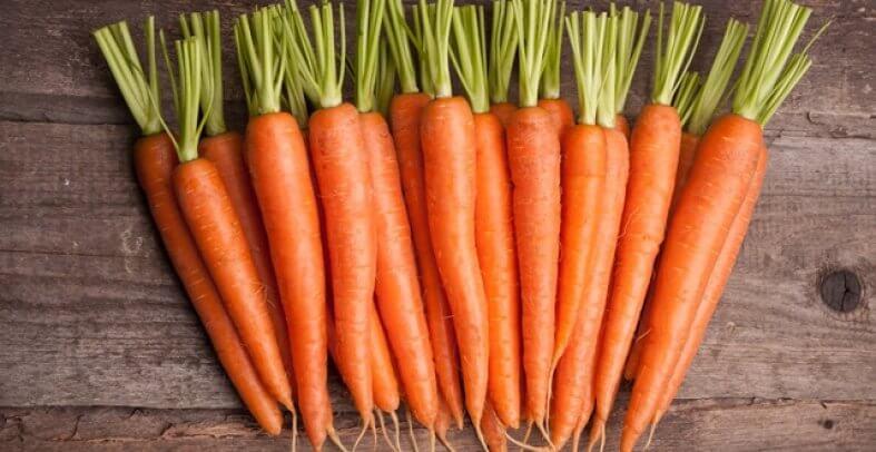 CENOURA 1 - Veja os benefícios da cenoura para a saúde! São vários!