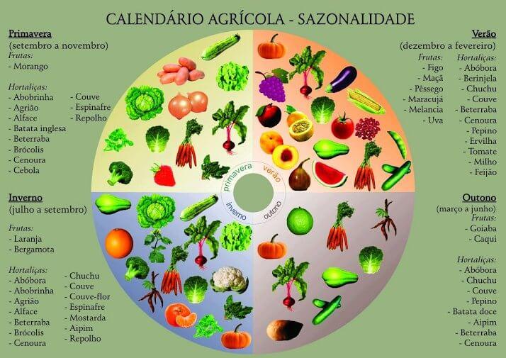 1 17 - Como saber quais são as frutas da estação? Veja tabela!