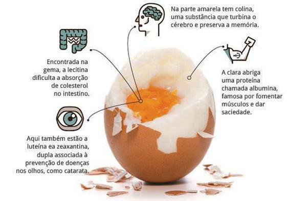 ovo 2 - Ovos e colesterol: ovo faz bem à saúde? Ou faz mal?