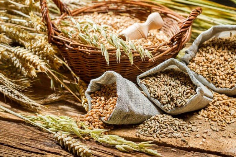 fonte da saude cereais integrais - Descubra Agora Quais São os Alimentos Mais Ricos em Ferro