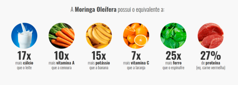 proteinas na moringa 1024x367 - Moringa Caps - Médicos Descobrem Solução Natural Para Cansaço e Indisposição