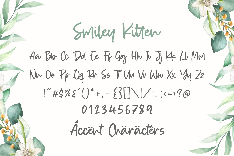 Smiley Kitten 6