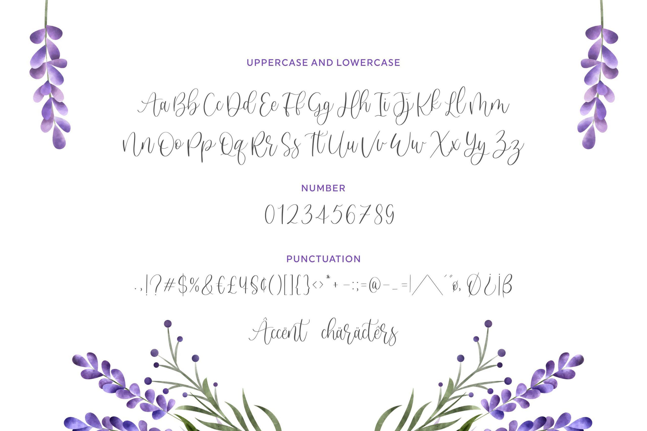 Sweet Lavender 6
