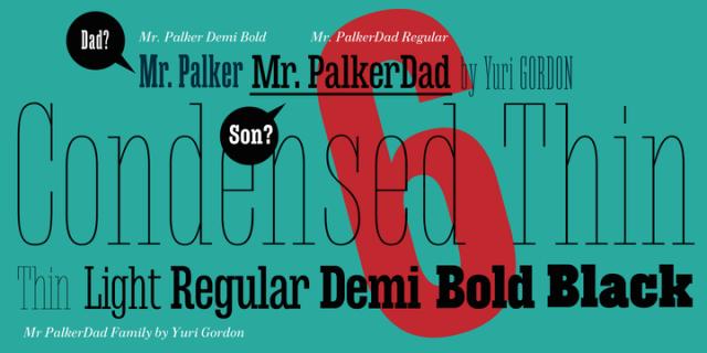 Mr Palker Dad