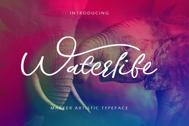 Waterlife Script