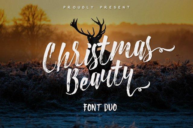 Christmas Beauty Brush