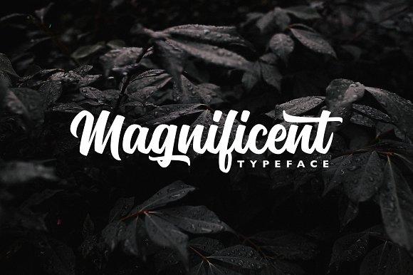 Magnificent Typeface