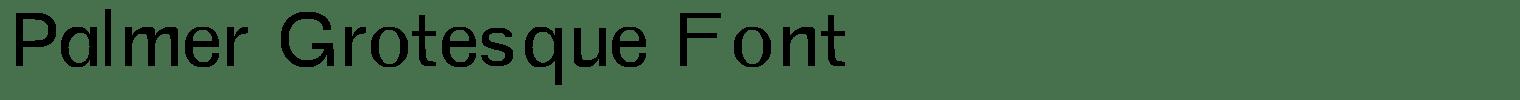 Palmer Grotesque Font