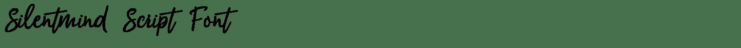 Silentmind Script Font