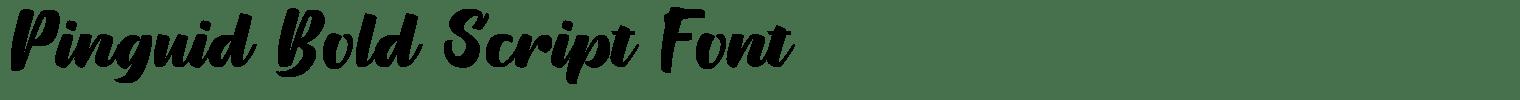 Pinguid Bold Script Font