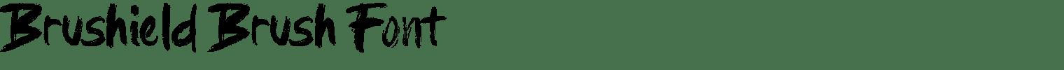 Brushield Brush Font