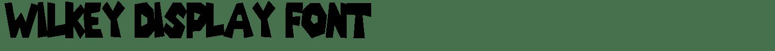 Wilkey Display Font