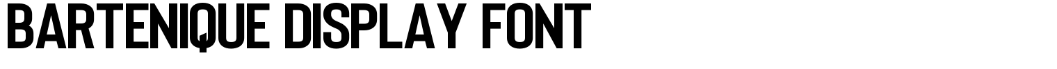 Bartenique Display Font