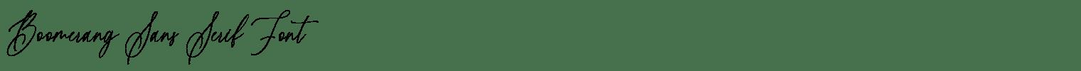 Boomerang Sans Serif Font