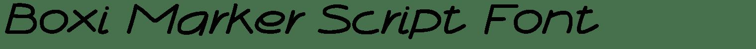 Boxi Marker Script Font