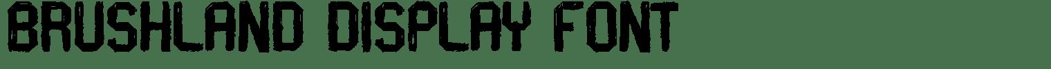 Brushland Display Font