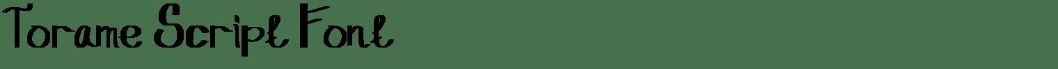 Torame Script Font