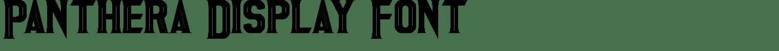Panthera Display Font