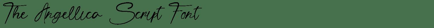 The Angellica Script Font