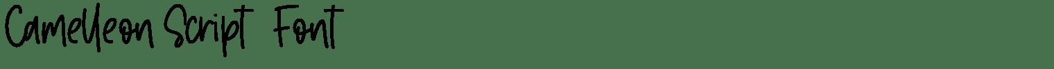 Camelleon Script   Font