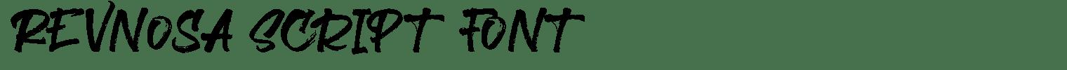 Revnosa Script Font
