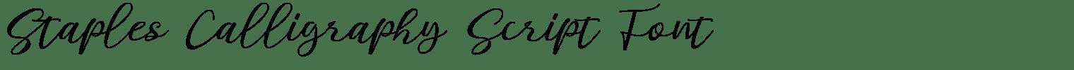 Staples Calligraphy Script Font