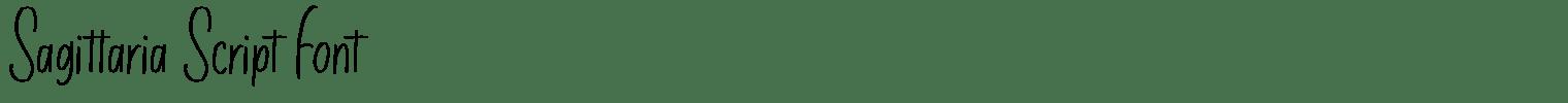Sagittaria Script Font