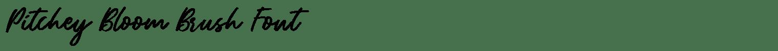 Pitchey Bloom Brush Font