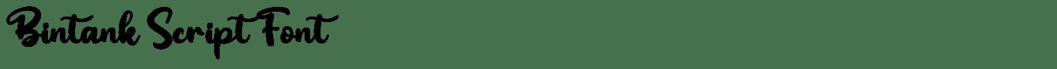 Bintank Script Font