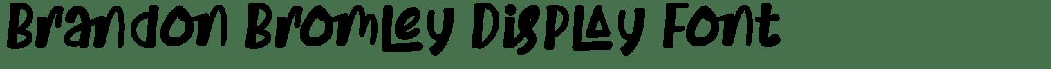 Brandon Bromley Display Font