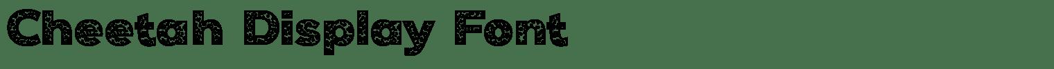 Cheetah Display Font