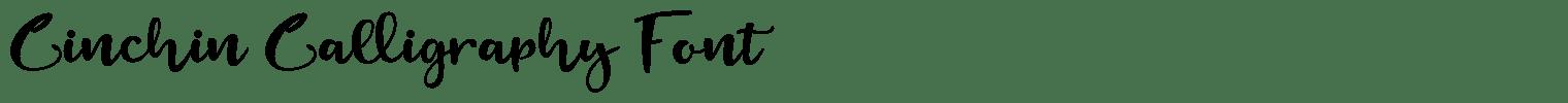 Cinchin Calligraphy Font