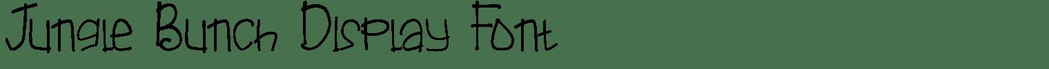 Jungle Bunch Display Font