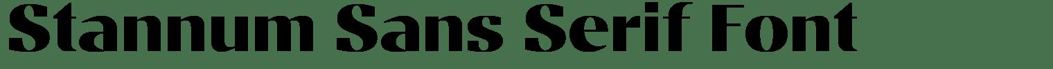 Stannum Sans Serif Font