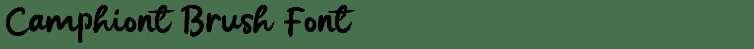 Camphiont Brush Font