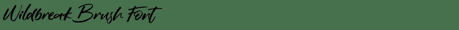 Wildbreak Brush Font